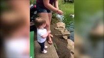 Cet enfant a une drole de faç de nourrir les canards... Ahahah