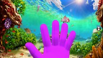 Finger Family Song | Sea Animals Sharks Dolphins Octopus Whales Finger Family Nursery Rhymes