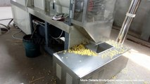 Corn flakes & grain flakes making machine    Also can produce rice flakes or other grain flakes