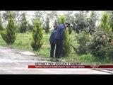 Hetimet për vrasjen e Beqirit - News, Lajme - Vizion Plus
