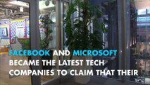 Facebook, Microsoft say they pay women, men equally
