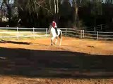 Me simply cantering my horsey