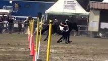 pony games lamotte 2008 blacks boulets basket qualif1