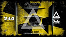 GROOVY S - DANGEROUS #244 EDM electronic dance music records 2016