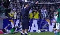 Palmeiras Campeão Copa do Brasil 2012 - Melhores momentos ESPN