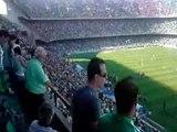 Real Betis-Valladolid: La afición de mi betis siempre es de primera