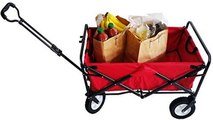Mini Teaching Cart