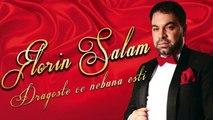 Florin Salam - Dragoste ce nebuna esti [Oficial Audio]2016 Hit