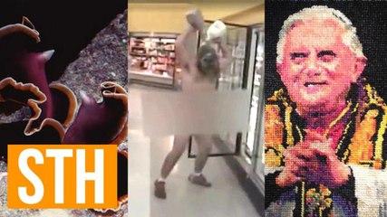 Horrifying Flatworm Sex, Naked Wal-Mart Milk Man, Scandalous Pope Art!