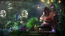 Rainha das Flores (SIC) - Conheça a vilã Narcisa