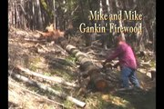 Mike and Mike Gankin' Firewood Time Lapse