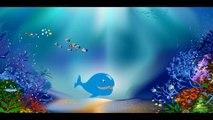 La baleine --- Chansons enfantines