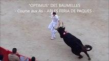 OPTIMUS DES BAUMELLES-Meilleur Taureau-COURSE CAMARGUAISE aux AS-FERIA DE PAQUES en ARLES 2016