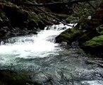 Aberystwyth University Kayak Club Creeking 02
