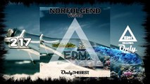 NORFOLGEND - VISION #217 EDM electronic dance music records 2015