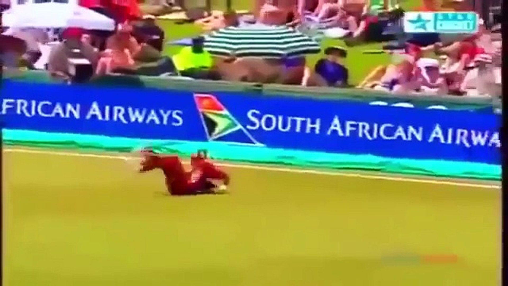 Best Catches in Cricket History - Top Cricket Catches - Cricket Highlights 2016 - You World