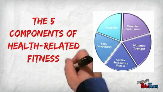 The 5 Components of Health Related Fitness - video dailymotion