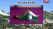 Apanasan  Yoga Asanas  Yoga For Weight Loss  Yoga For Beginners
