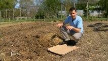 Jardinage : Des conseils pour préparer la terre (Vendée)