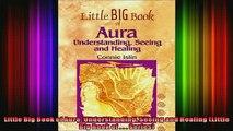 Read  Little Big Book of Aura Understanding Seeing and Healing Little Big Book of     Full EBook