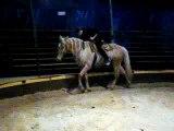 Voltige cosaque 2010 ^^