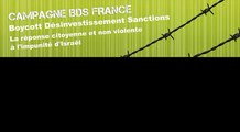 Action BDS - Carrefour de Saint Denis (24/04/2010)
