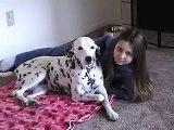Cet homme photographie sa fille et son dalmatien, ce que le chien fait est trop cool !