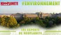 Vienne, la capitale qui voit la vie en bio