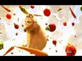 Animal esseyant d'avoir de la nourriture