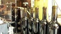 Mise en bouteille Pillebois vieilles vignes millésime 2010 - Vignobles Marcel petit