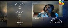 Zindagi Tujh Ko Jiya- Episode 36  HUM TV Drama 20 April 2016-Promo