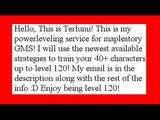 Maplestory power leveling service GMS