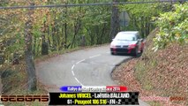 Peugeot 106 S16 - Johanes VIRICEL - RALLY - 2014 - Ried Centre Alsace + Laëtitia BALLAND