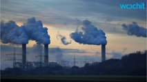 Over Half Of Americans Breathe Polluted Air