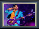 Prince Rogers Nelson RIP
