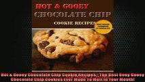FREE PDF  Hot  Gooey Chocolate Chip Cookie Recipes  The Best Ooey Gooey Chocolate Chip Cookies  FREE BOOOK ONLINE