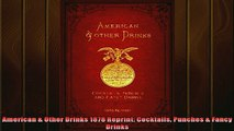 FREE DOWNLOAD  American  Other Drinks 1878 Reprint Cocktails Punches  Fancy Drinks  DOWNLOAD ONLINE