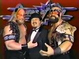 World Wrestling Fédération  (WWE) 1990.