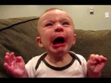 Babies Eating Lemons for the First Time Compilation 2016-Top Funny Videos-Top Prank Videos-Top Vines Videos-Viral Video-Funny Fails