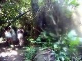 Tropical Rain Forest, Parque Nacional Tayrona, Santa Marta, Colombia