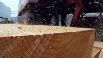 Widmer Brothers Brewing: Salvaging Timber for Tap Handles