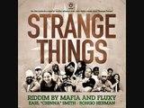 STRANGE THINGS RIDDIM HIP HOP MEGAMIX IRIE ITES RECORDS