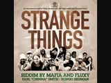 STRANGE THINGS RIDDIM HIP HOP MEGAMIX IRIE ITES RECORDS