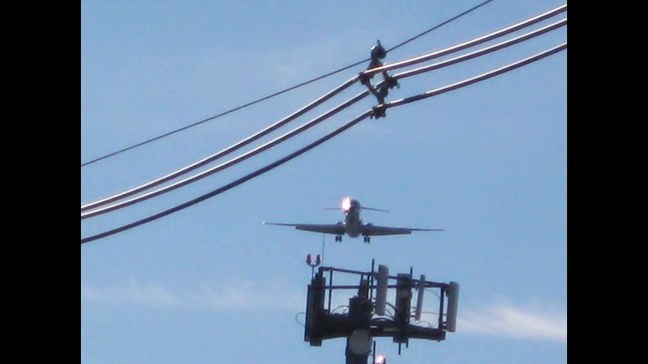 Turkeys in the Sky?!?! HD