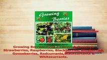 Read  Growing Berries How To Grow  Preserve Strawberries Raspberries Blackberries Blueberries PDF Online