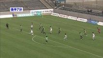 サッカーJ3 ガイナーレ鳥取 ホーム戦 初勝利は・・・