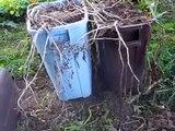 On dirait que ses poubelles sont pleines de déchets, mais lorqu'elle les retourne: WOW!