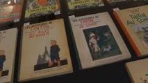Le chanteur Renaud vend ses bandes dessinées aux enchères