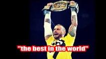 Undertaker vs. CM Punk WrestleMania 29
