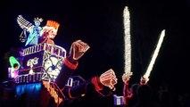 Carnaval de Cholet 2016 / System'D. La nuit.